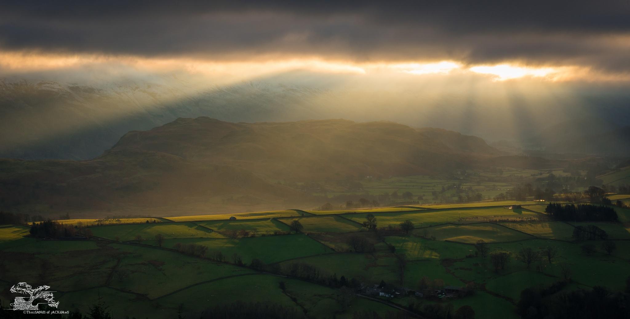 Sunbeams by Jonathan Thursfield