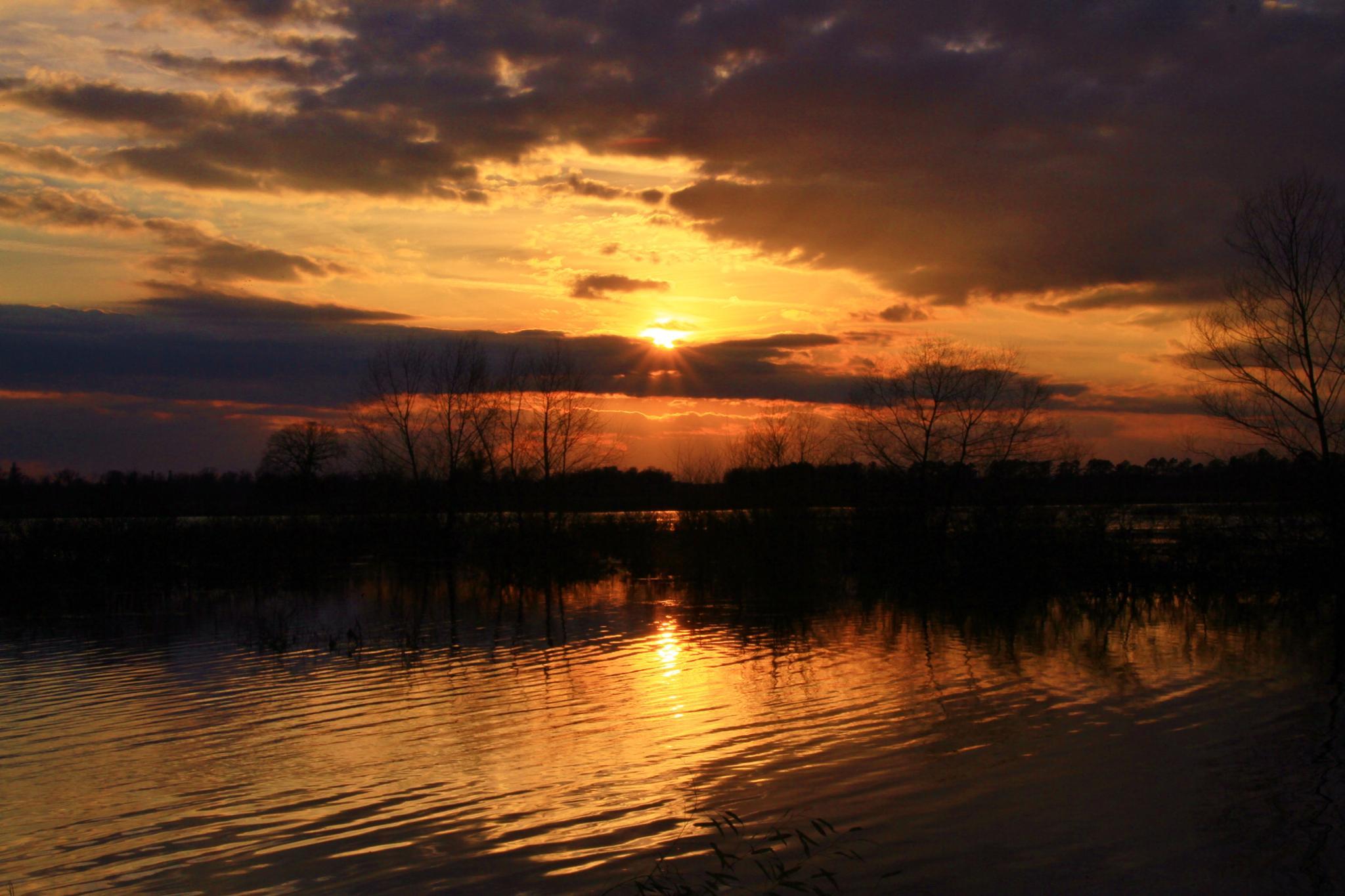 Sunset at Swan Creek by Jim Nash