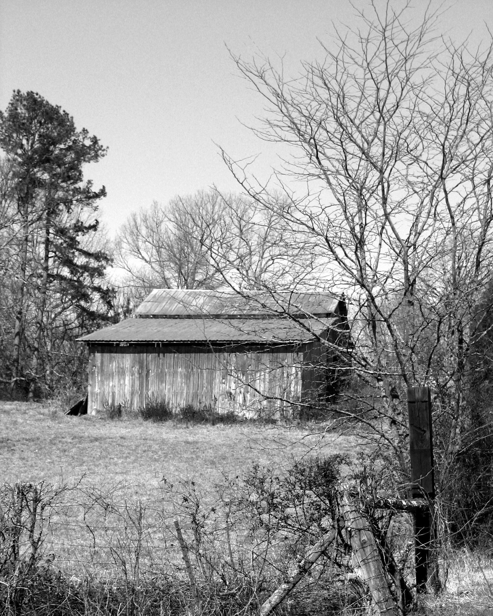 Abandoned Barn by Judy Dean