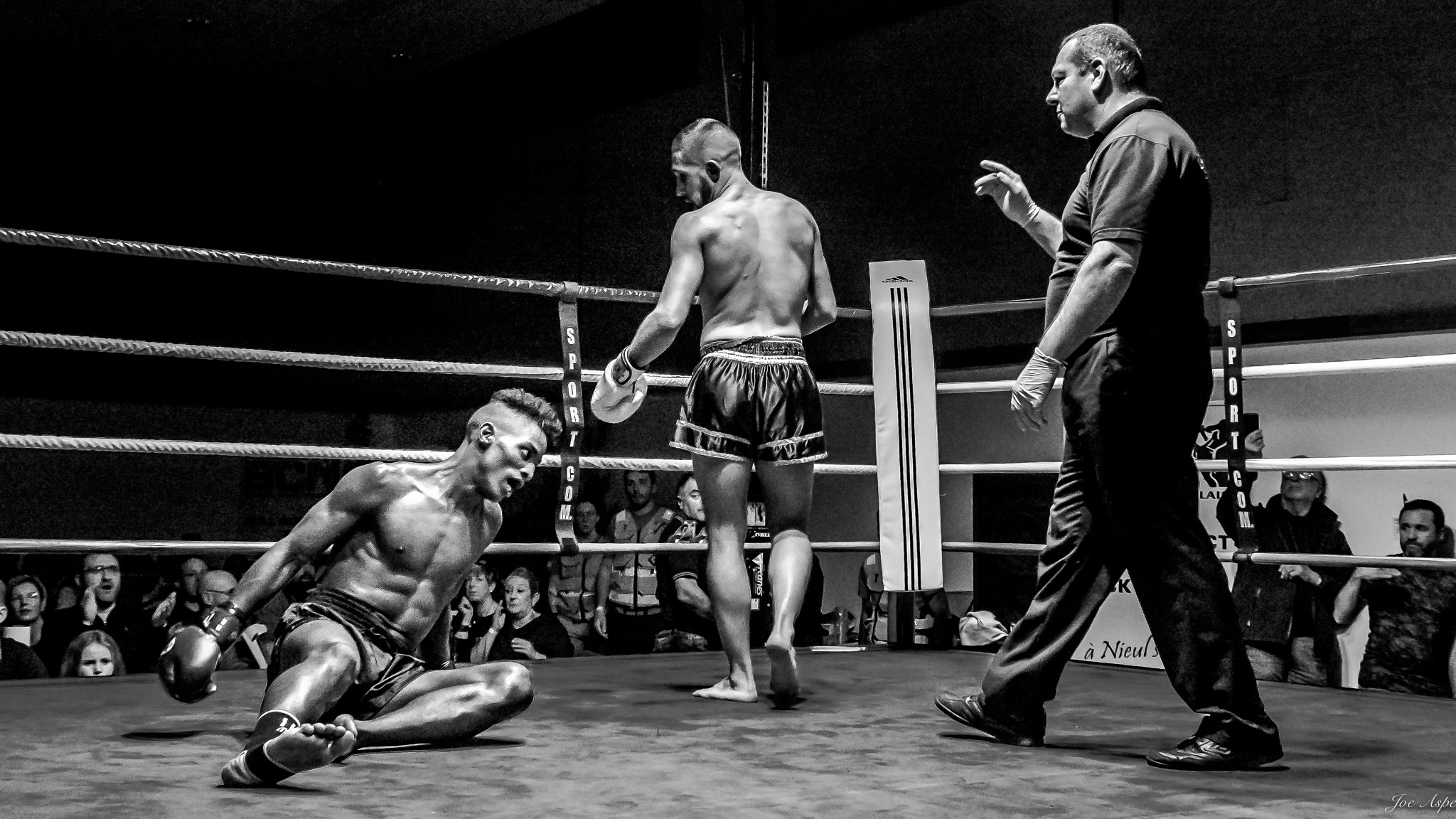 Photo in Sports #sports #boxing #kickboxing #knockout #monochrome #black and white