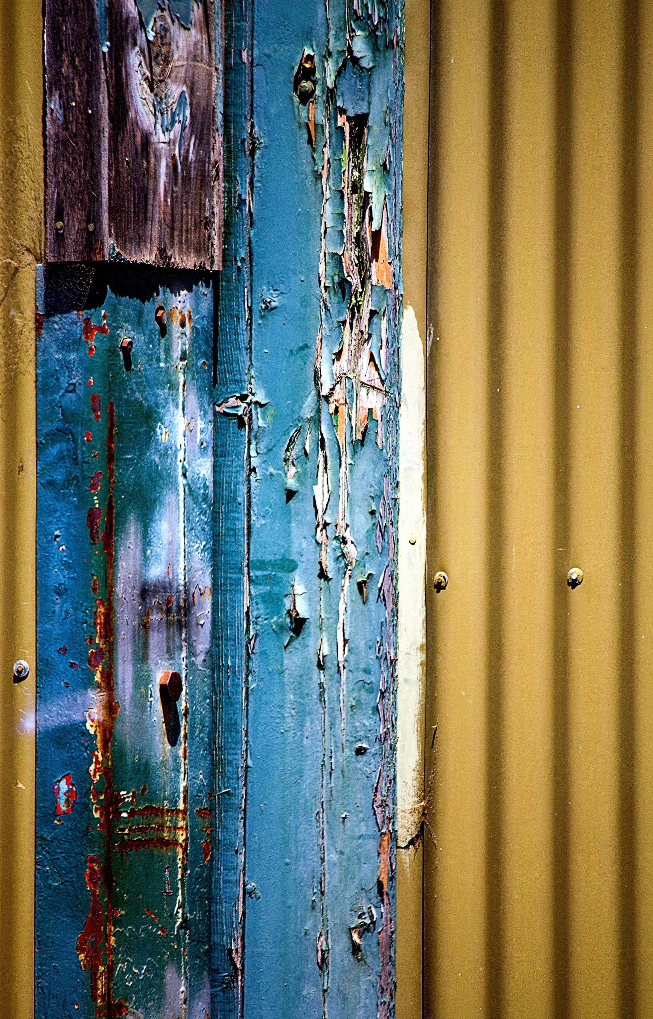 Weathered by Seven Treasures Photography