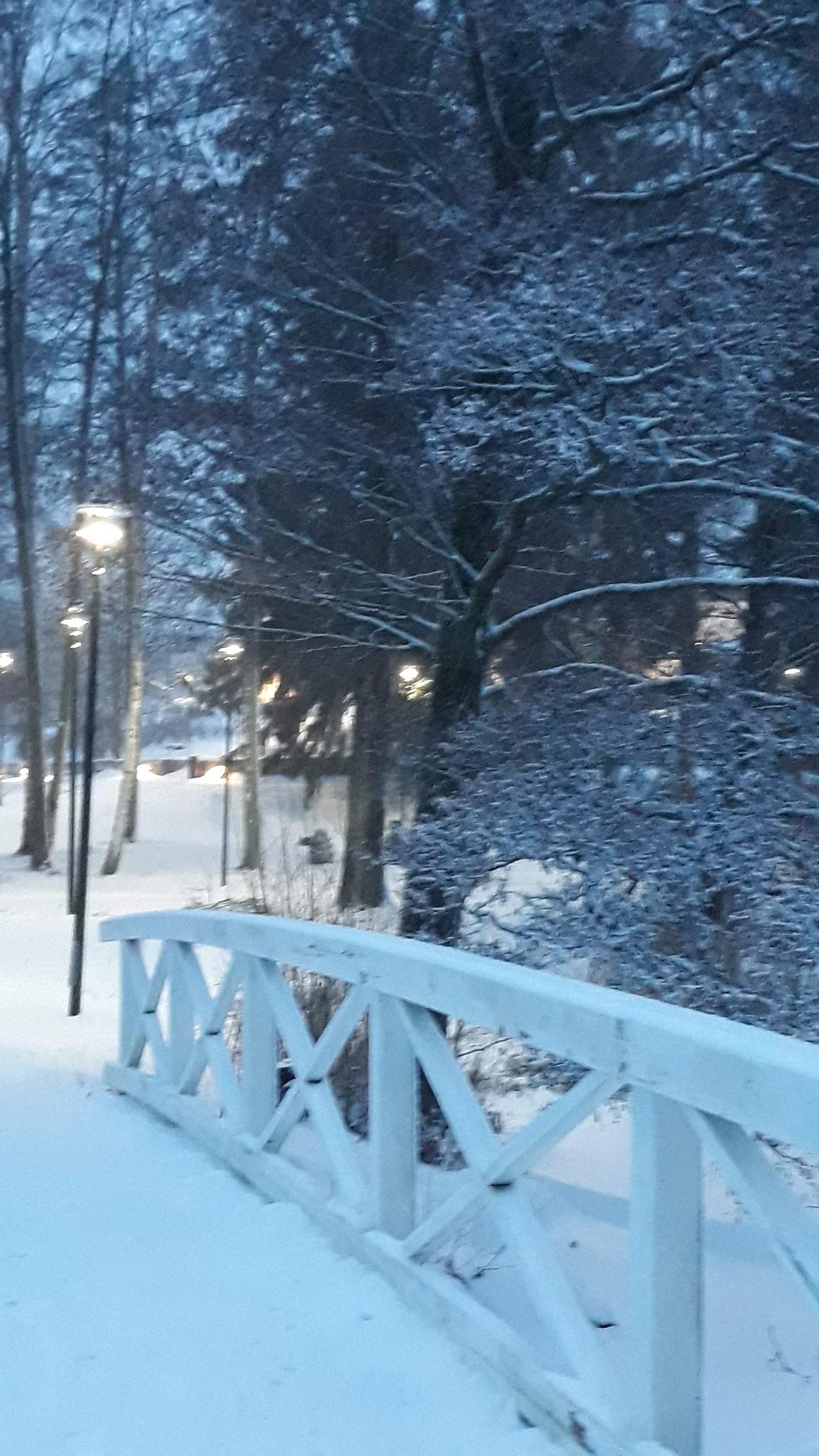 Winter park by Sanna Rosman
