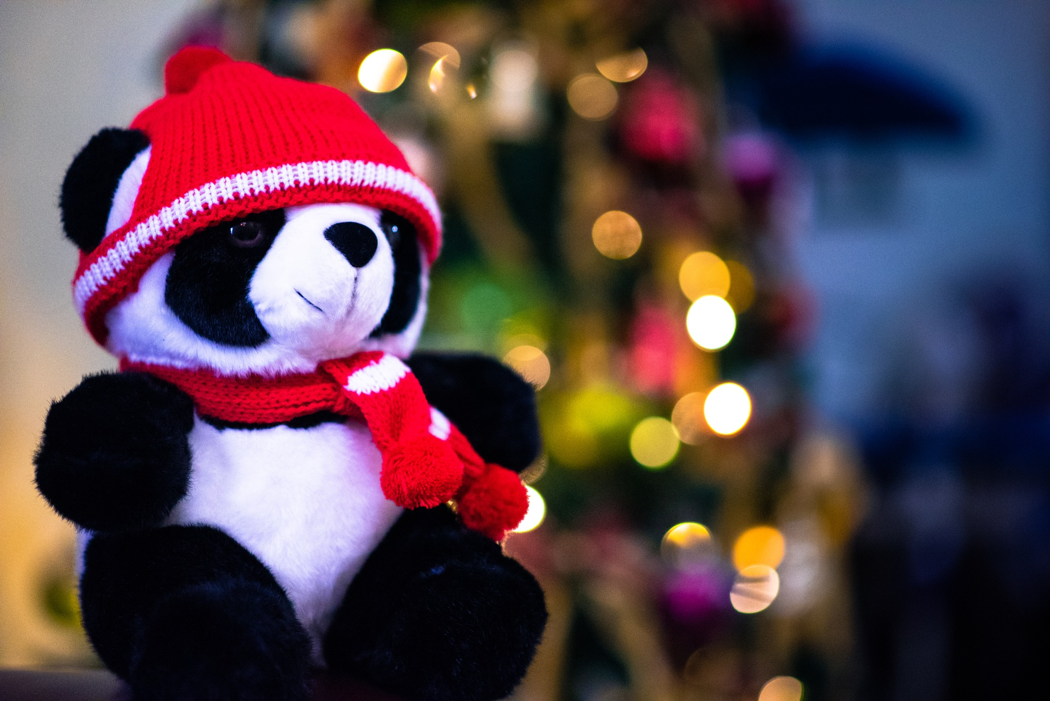 Panda in christmass by Andreas Malvin Wetik