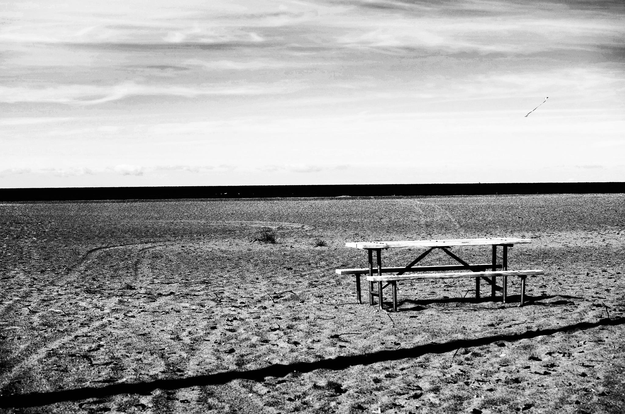 Desolate by AMZ