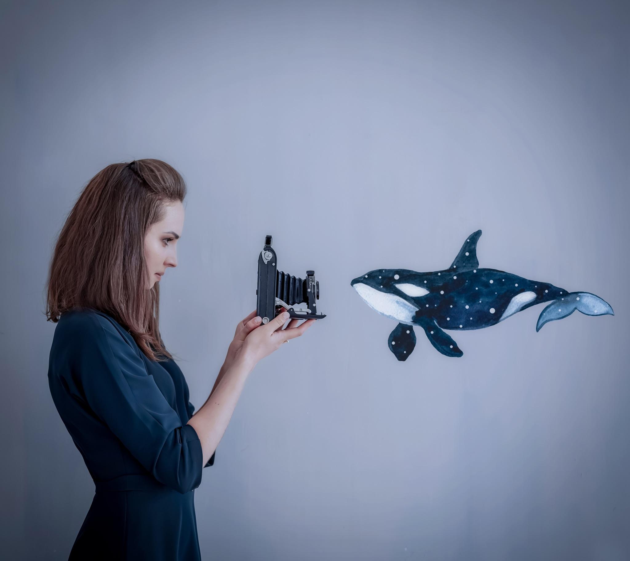 killer whale by Elena Ivanova
