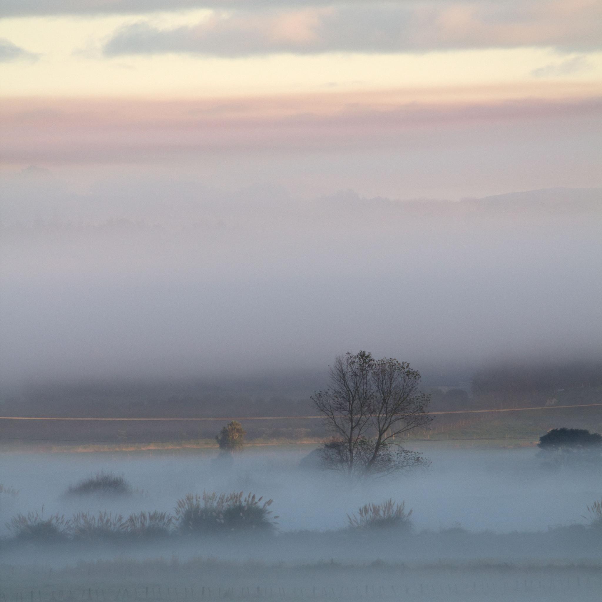 Misty Morning by Hugh Jones
