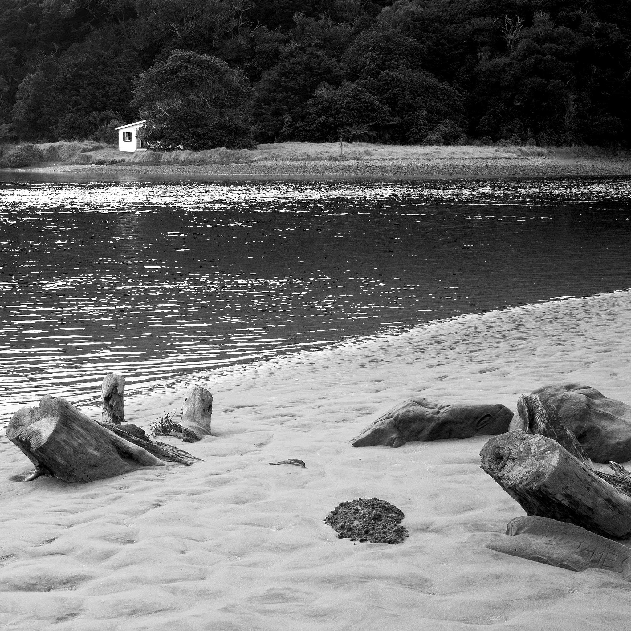 WATER FRONT NZ BATCH by Hugh Jones