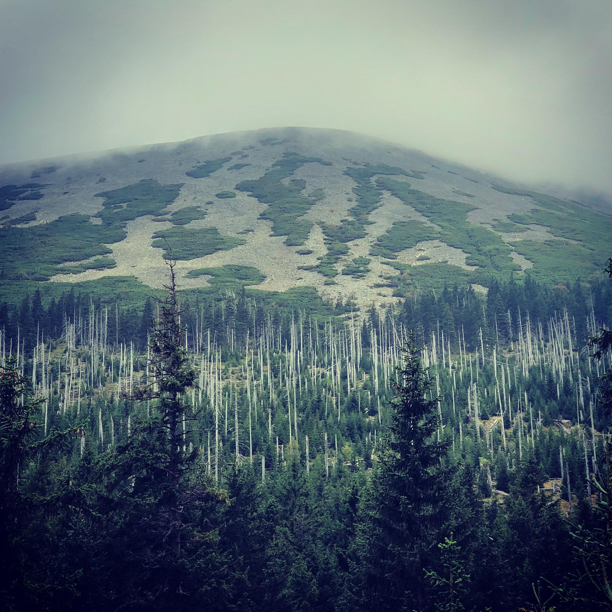Lonely mountain  by Kaja Walczak