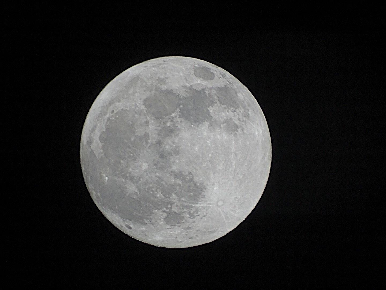 moonlight by Anouk Leering