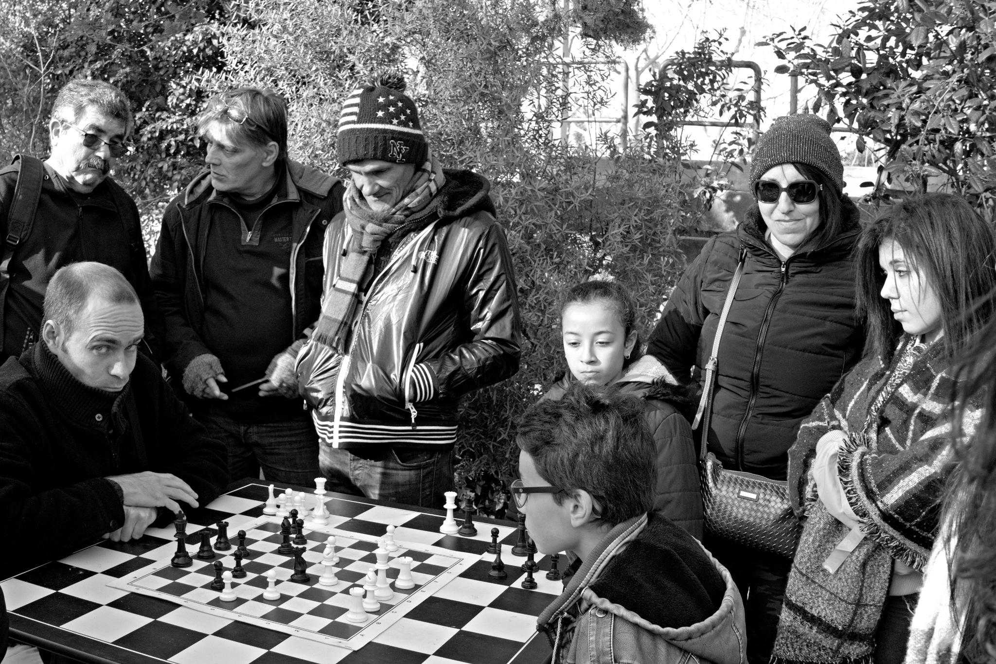 Chess by Gérard Barré