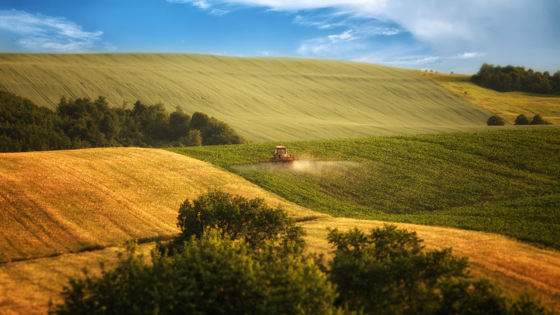 Photo in Landscape #ukraine #field #sky