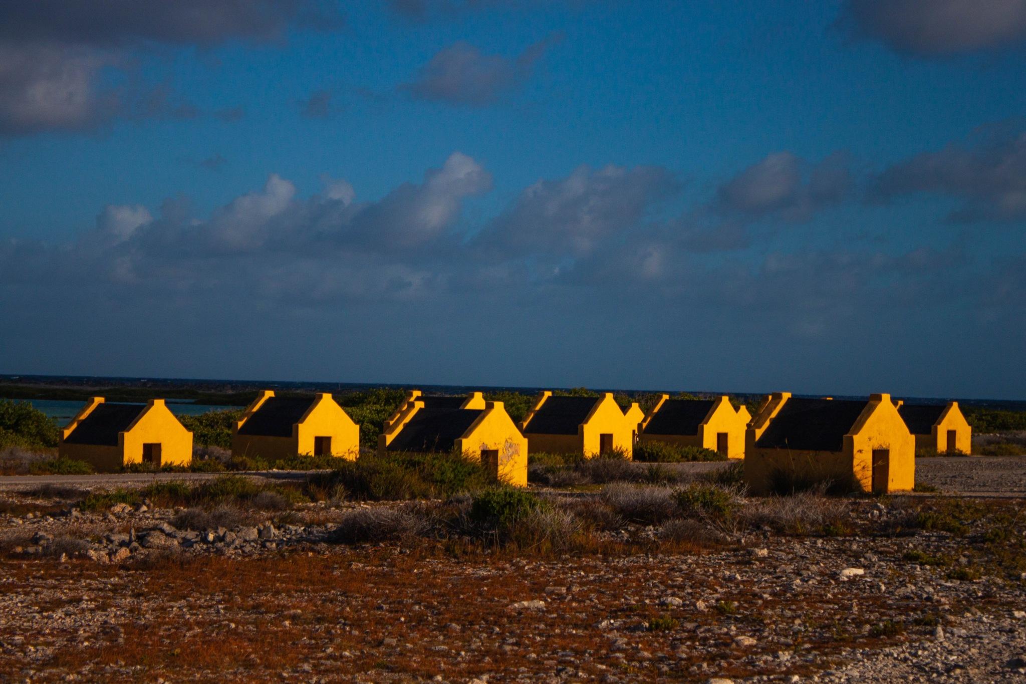 Orange Slave Houses Part 2 by Dimphy Deitmers