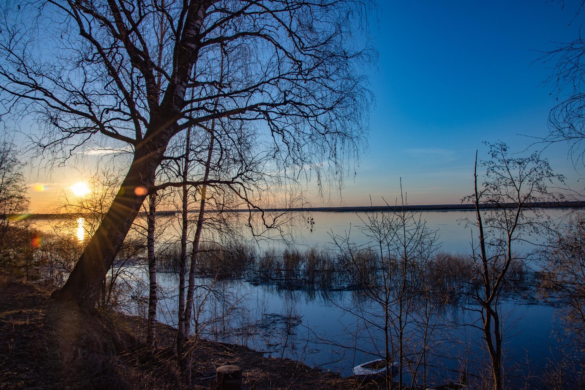 Photo in Landscape #spring #landscape #nature #water #river #tree #sun #horizon #sunset