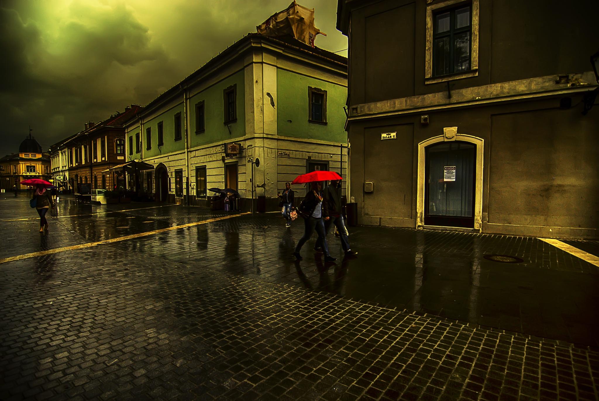 Rain by zoltancsirmaz