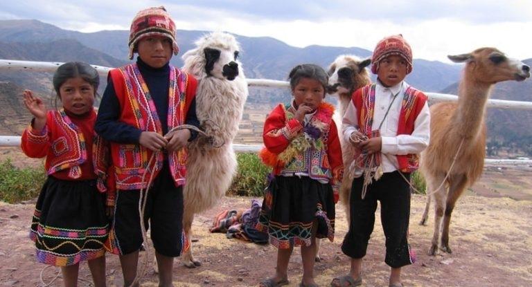 Where Do Alpacas Live by weispire007
