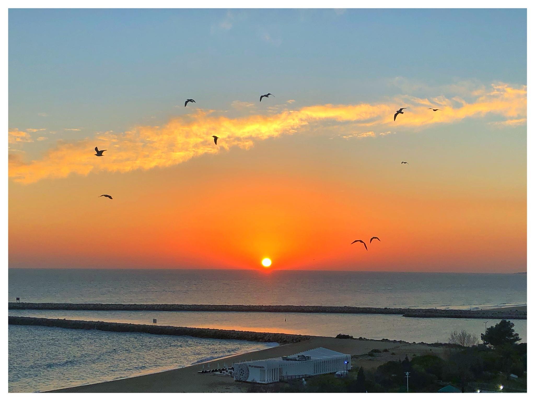 Photo in Random #sunset #sim #sky
