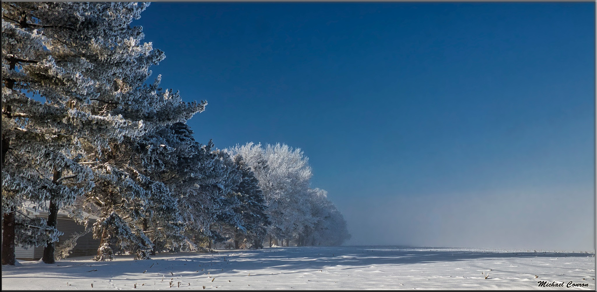 Photo in Landscape #midwest #frost #winter #snow #blue sky