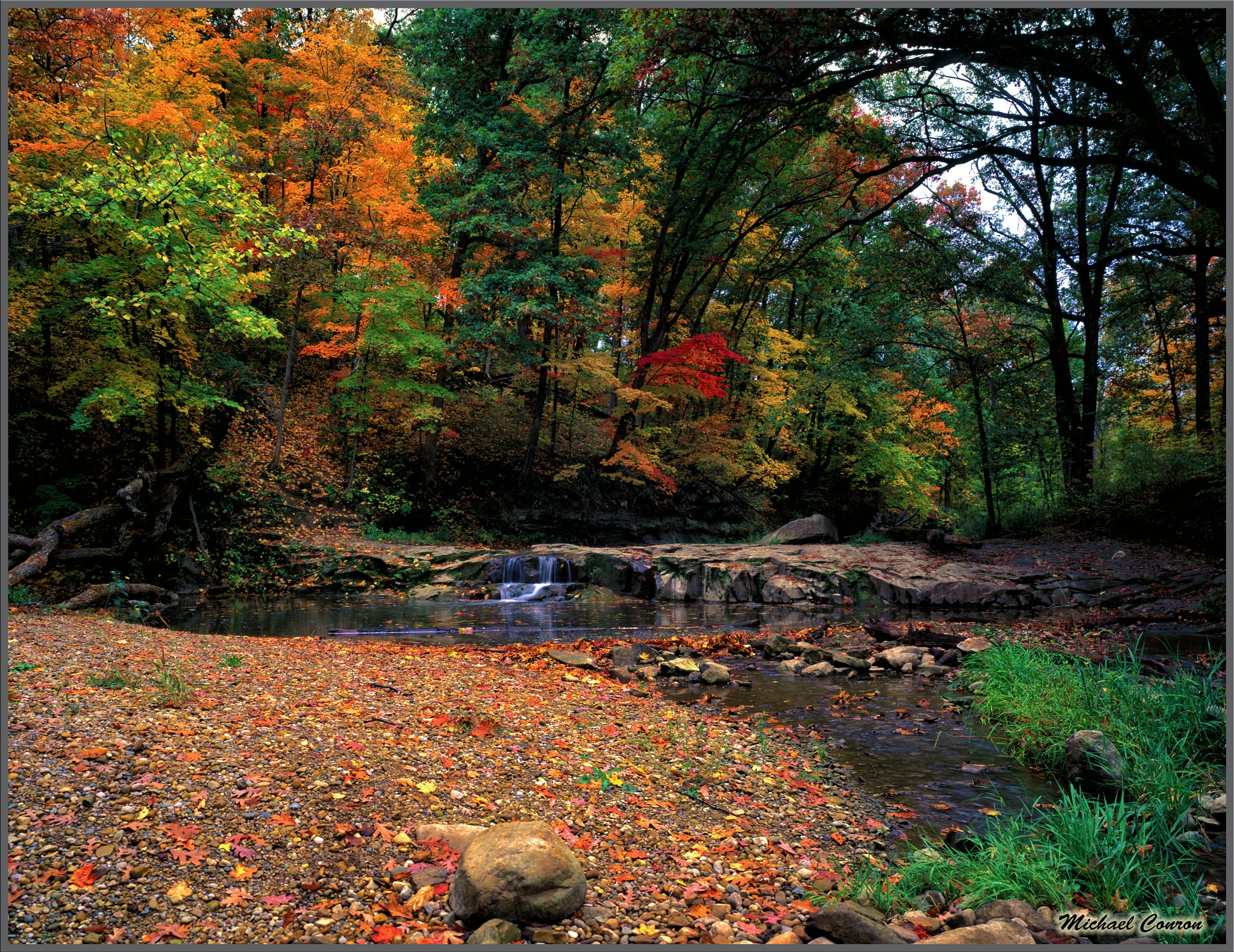 Indiana Fall Colors by Michael Conron