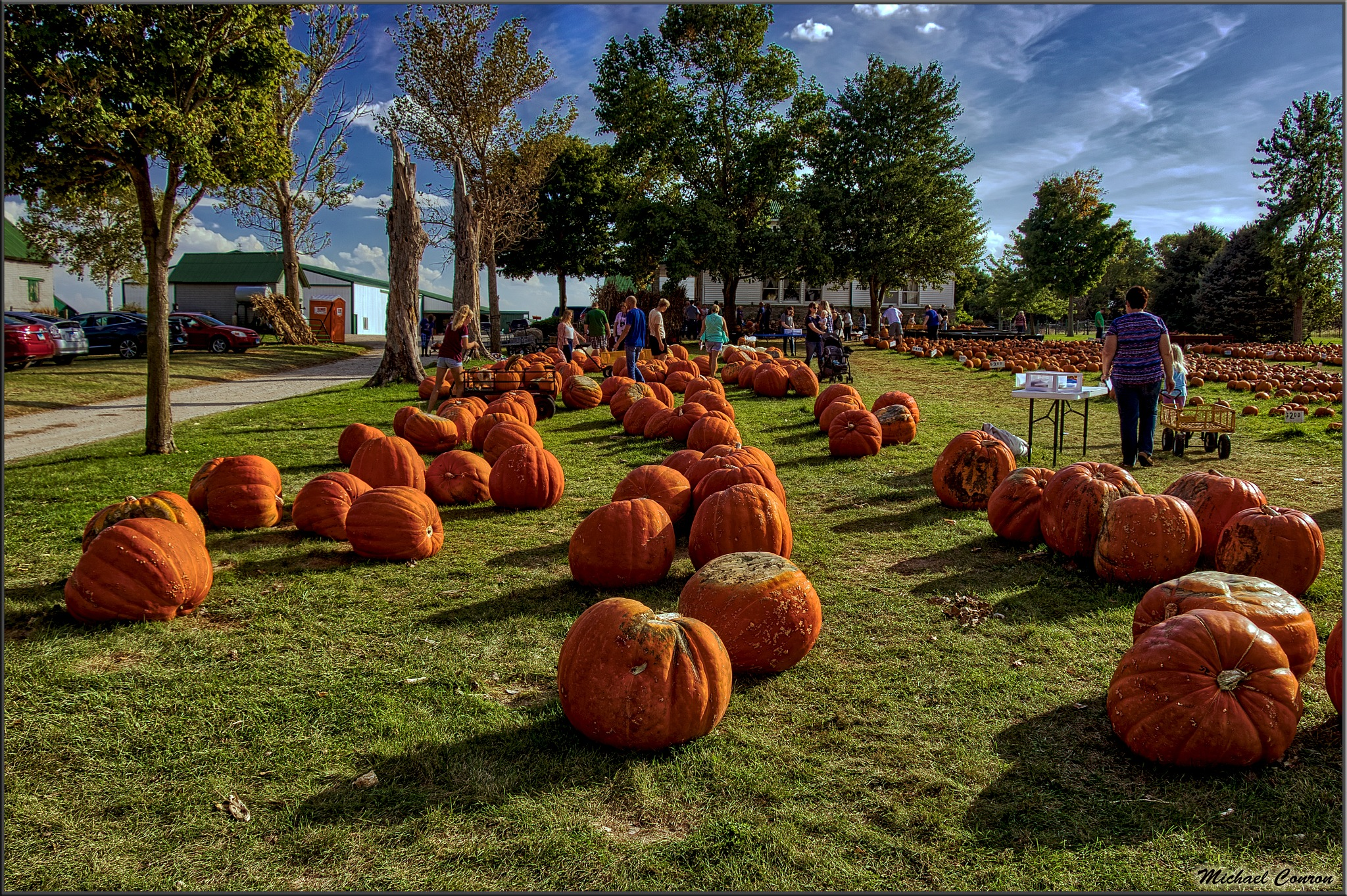 You Need a BIG Pumpkin?? by Michael Conron