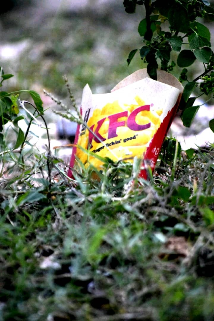 KFC food package by francis tito