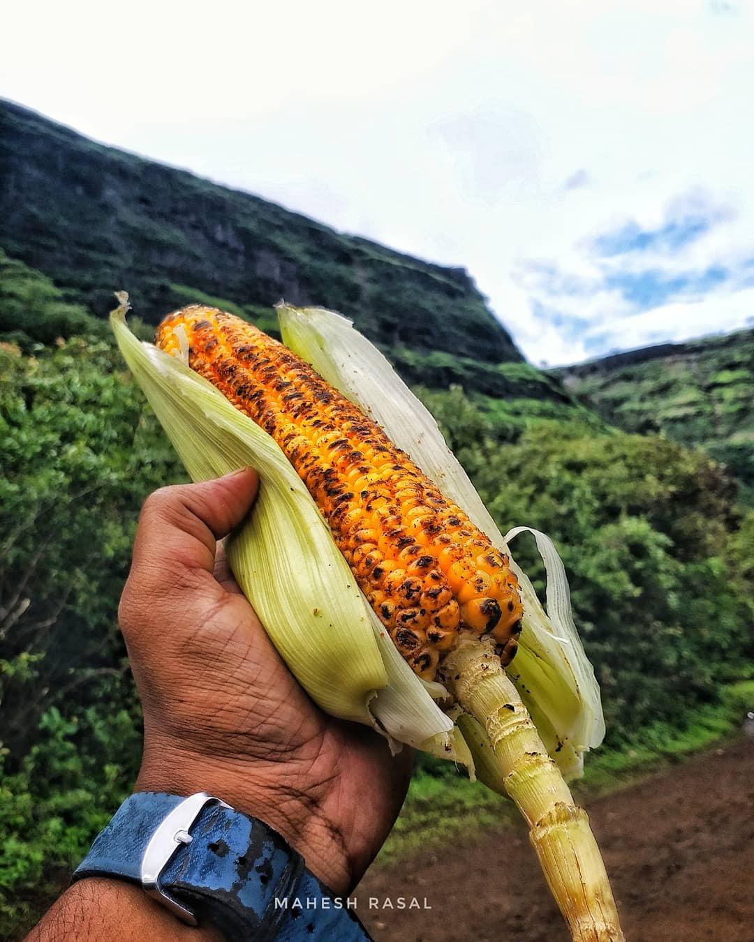 Photo in Food #natural #nature #corn #food #fastfood #wonderful #wanderlust #sahyadri