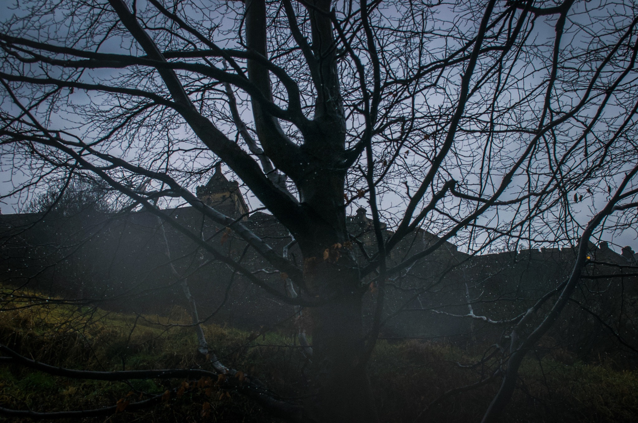 Photo in Landscape #scotland #edinburgh #edinburgh castle #history #moody