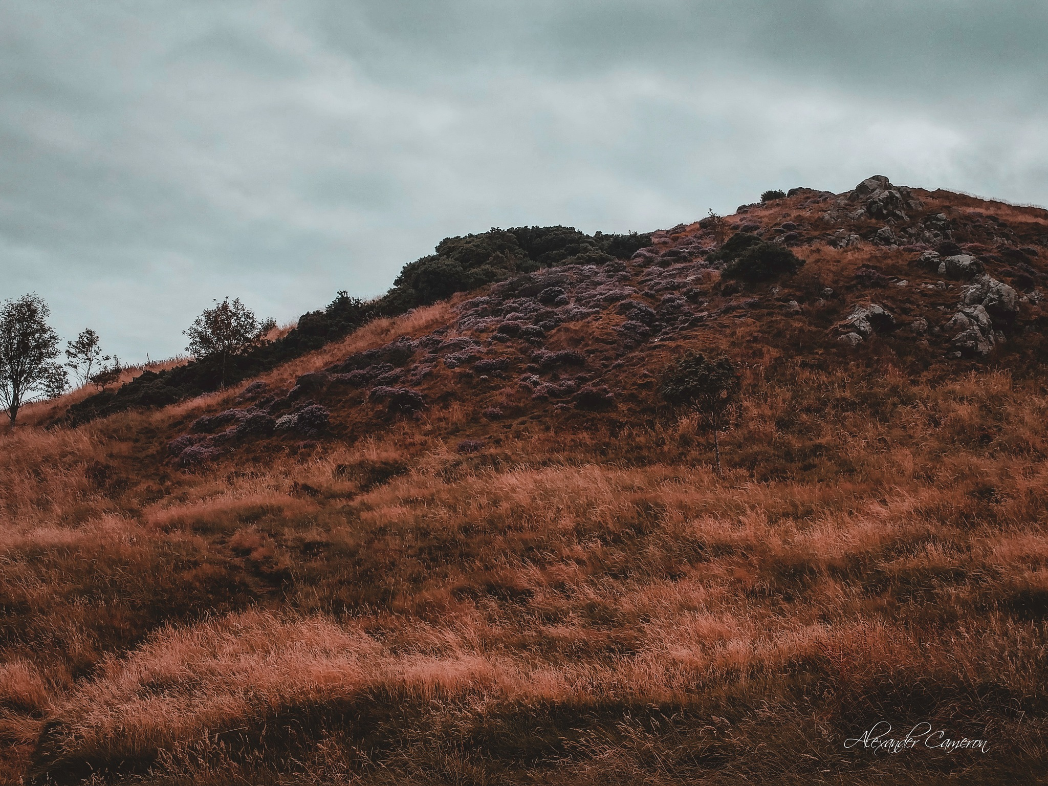 Backside of Arthur's Seat by Alexander Cameron