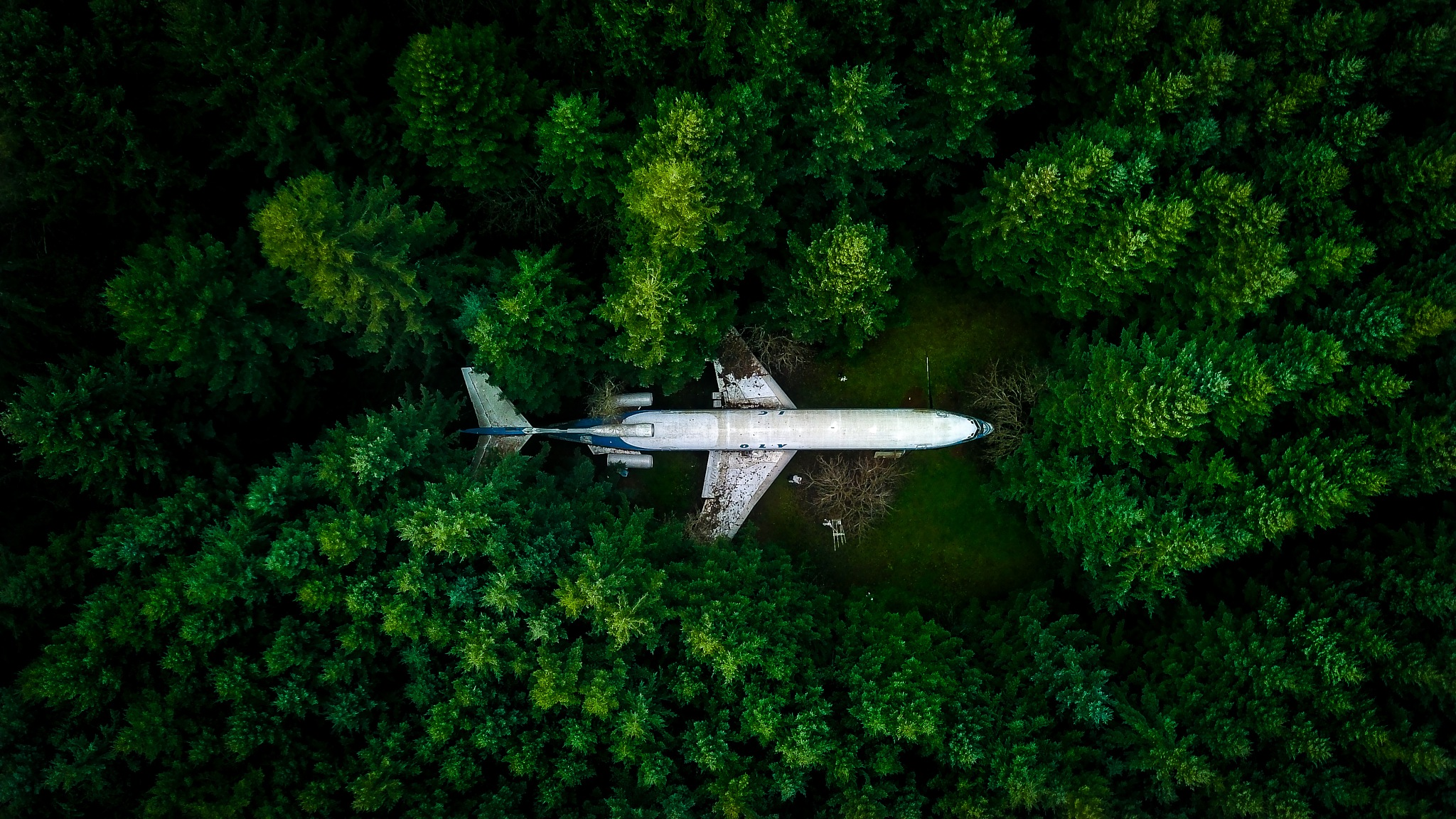 Air Plane House  by NathanMallory