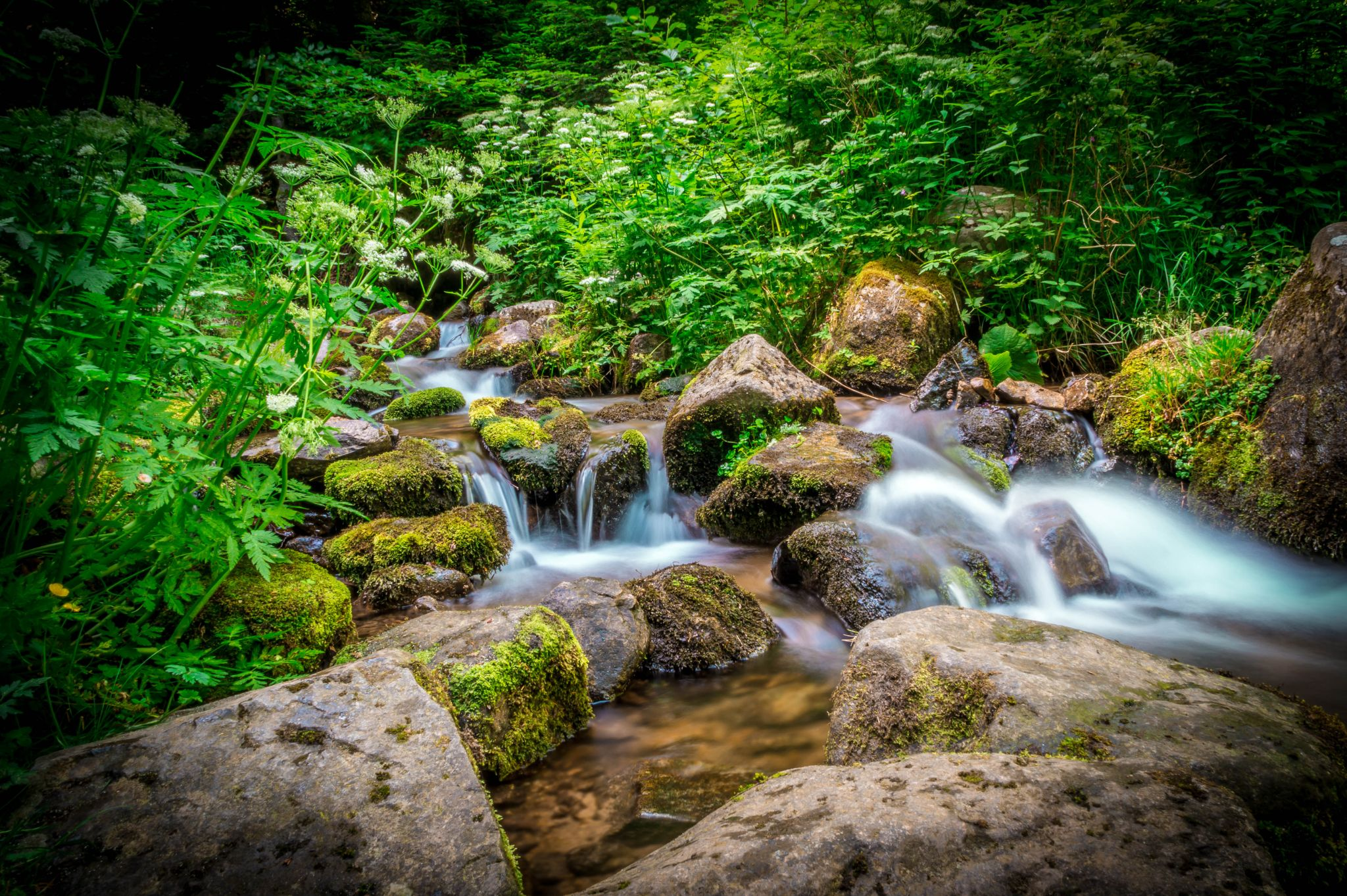 river by RD Photography
