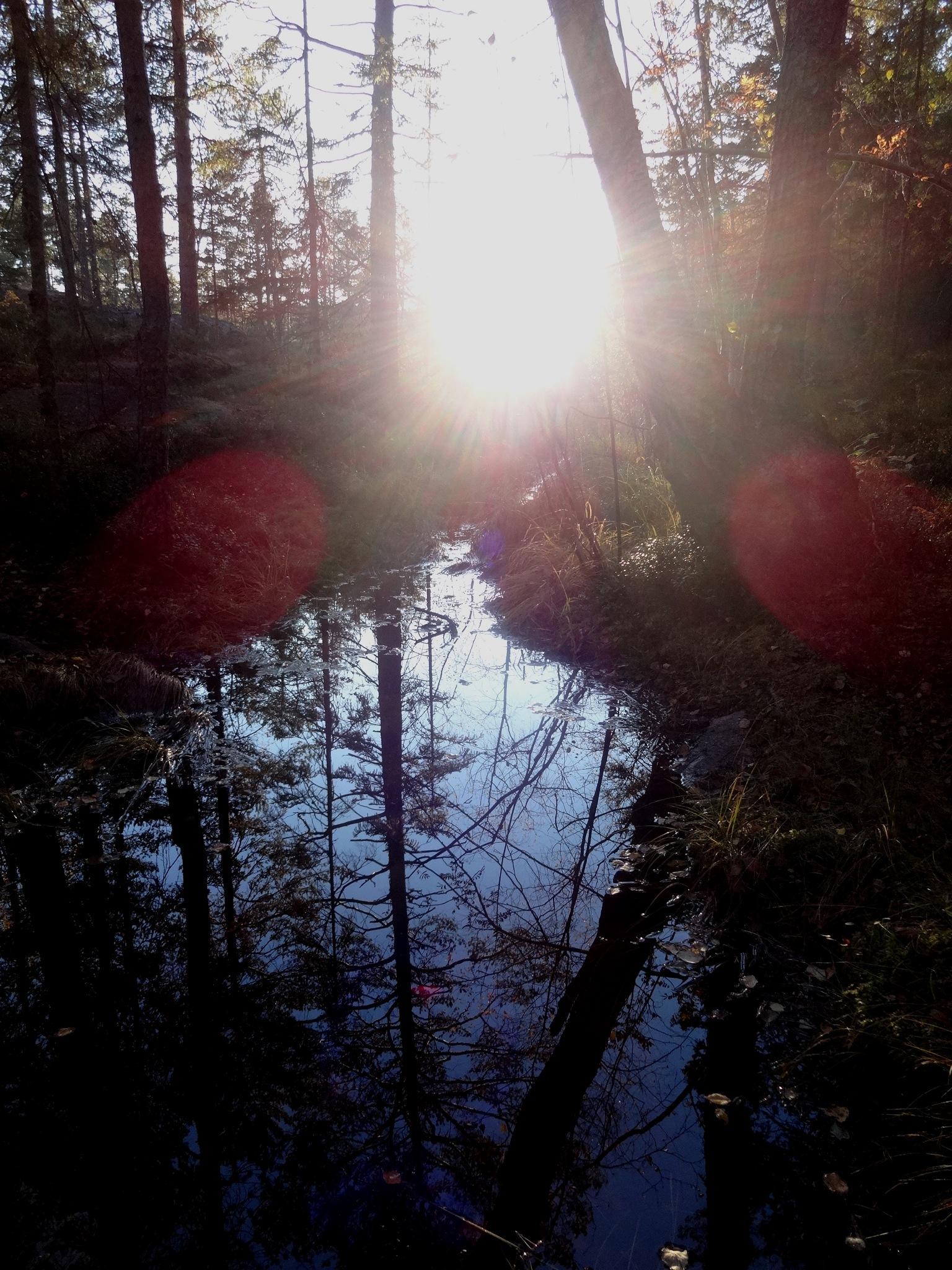 Mountain Creek by Karolis Abramavičius