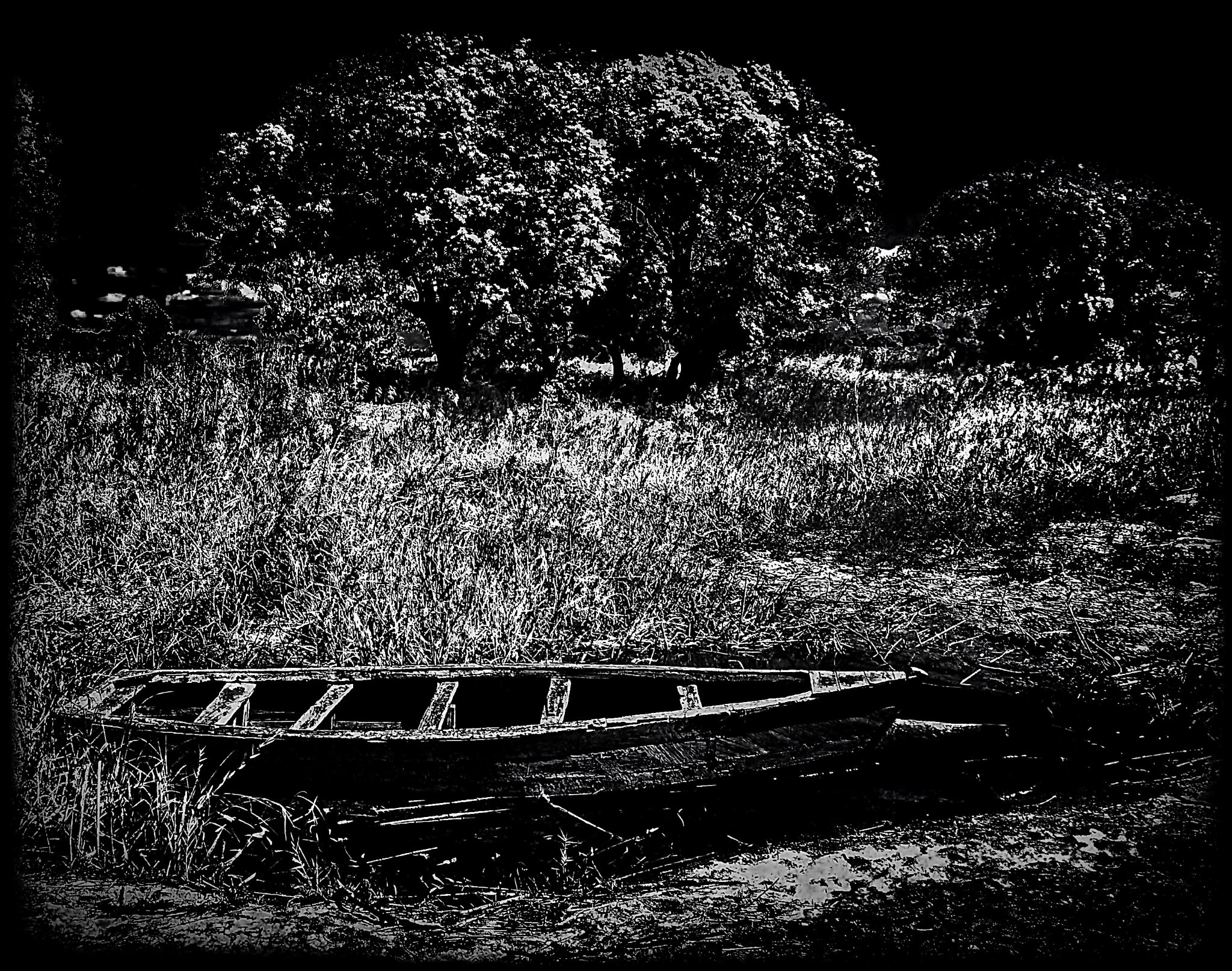 Broken Canoe beside Lake Malawi by David Owen