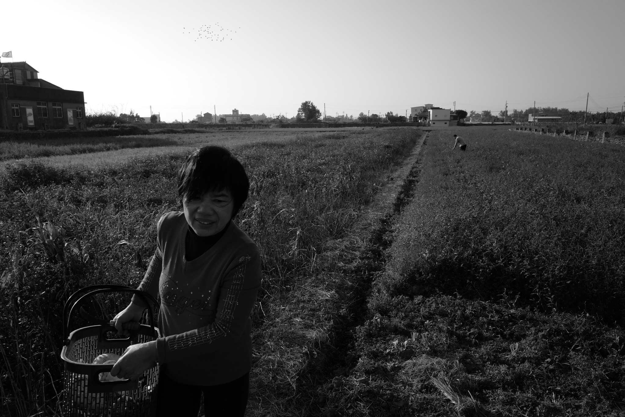 Country folk by HSIN-YUAN,CHENG