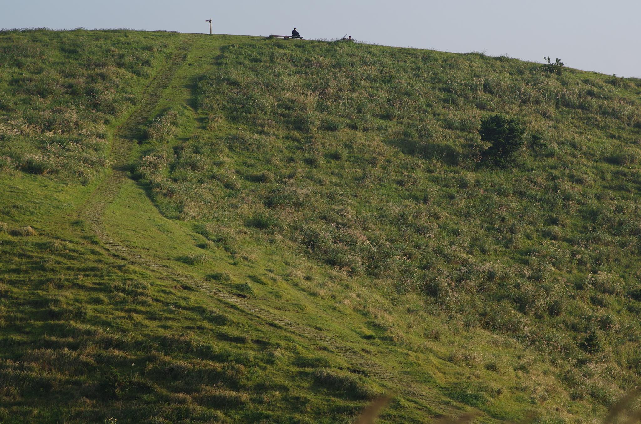 Photo in Landscape #jeju going #september #landscape of jeju #jeju #landscape
