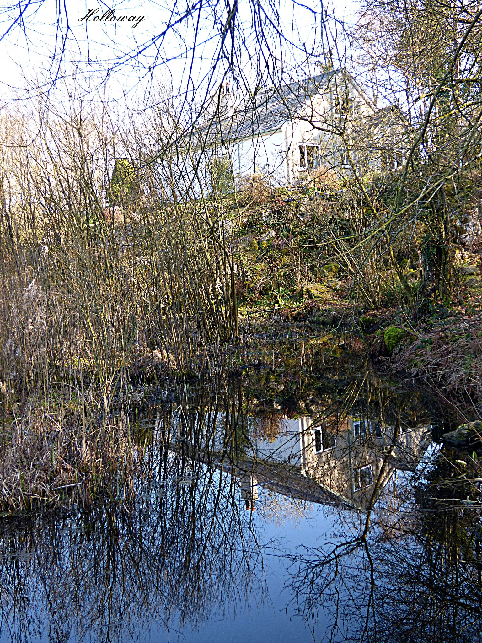 Bank Well reflections by John Holloway