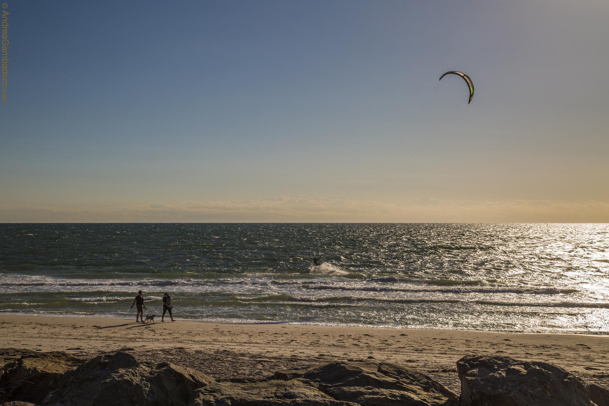 Adelaide's Beach by Andrea Gambadoro