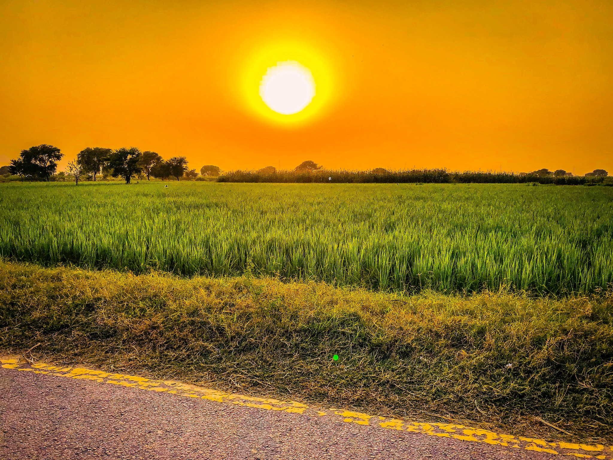 #sunset by qaiserch26