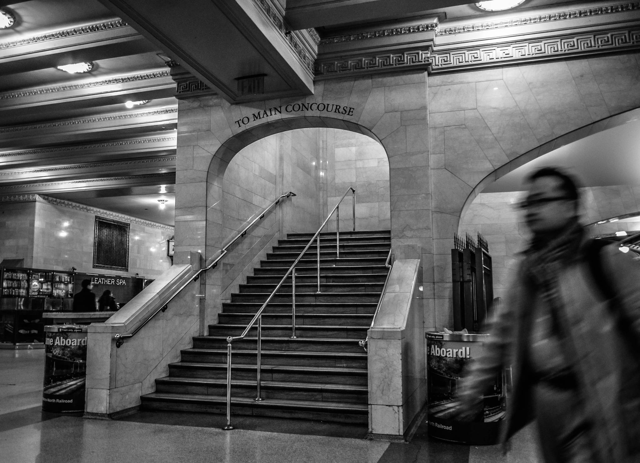 grand central station by jure kralj