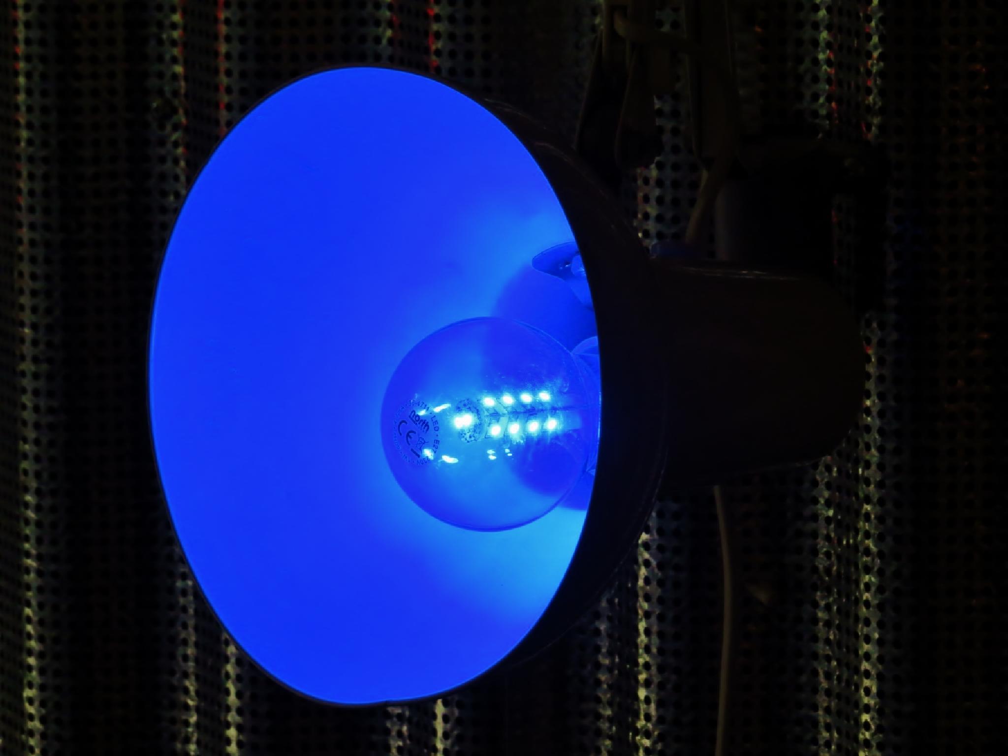 Feeling Blue by Thor Dullum