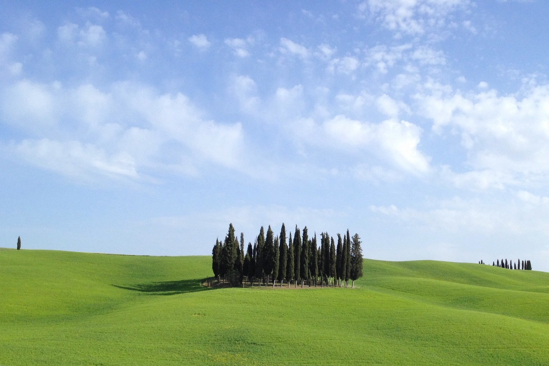 Untitled by Roberto Mandolini