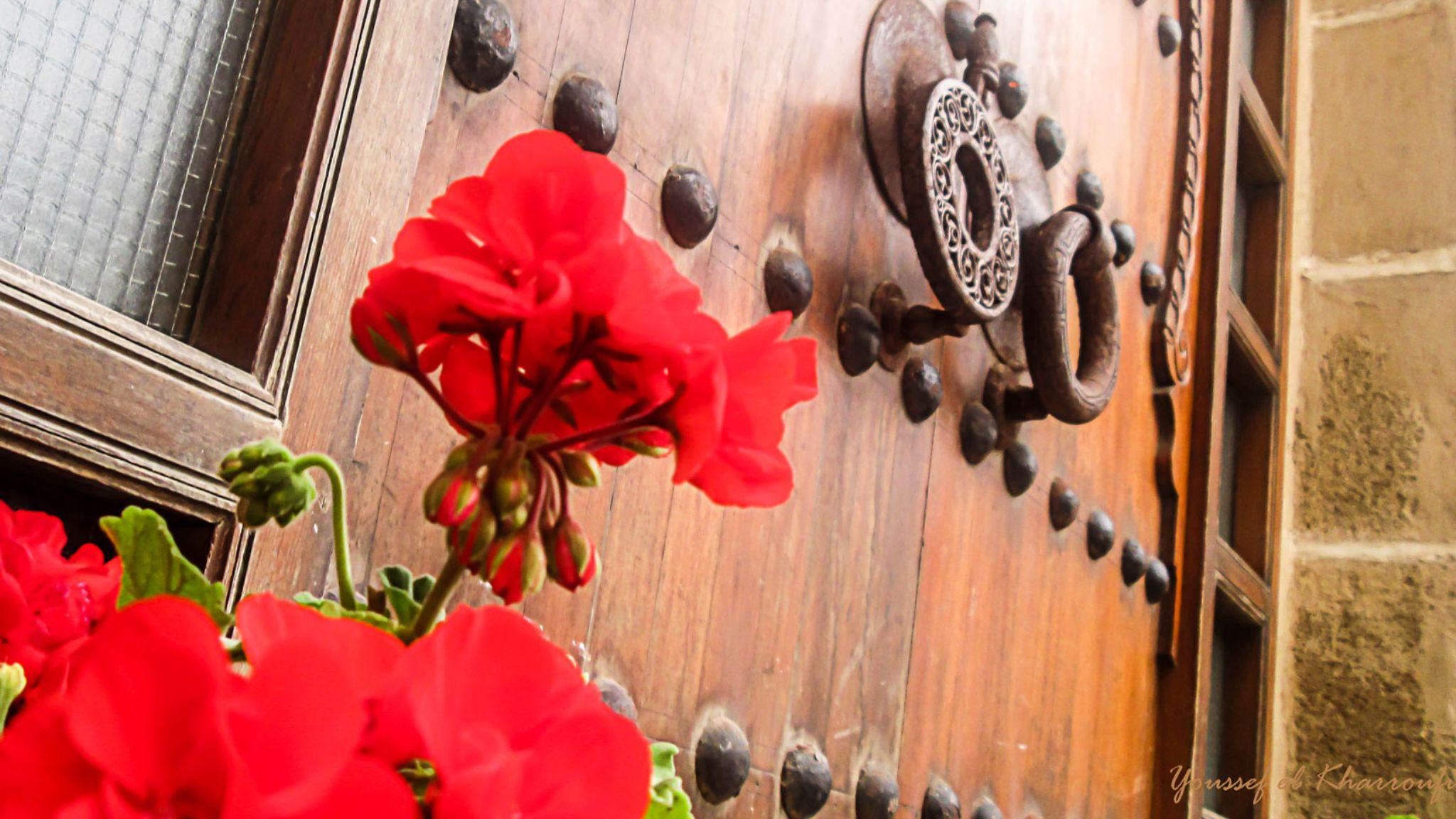 fleur et porte by Youssef Kharroufi