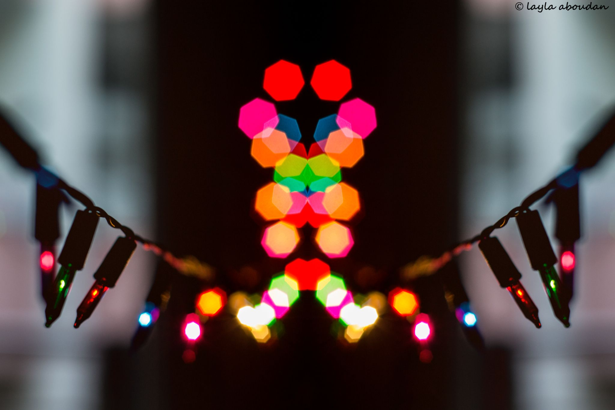 lights will guide you home by Layla Aboudan