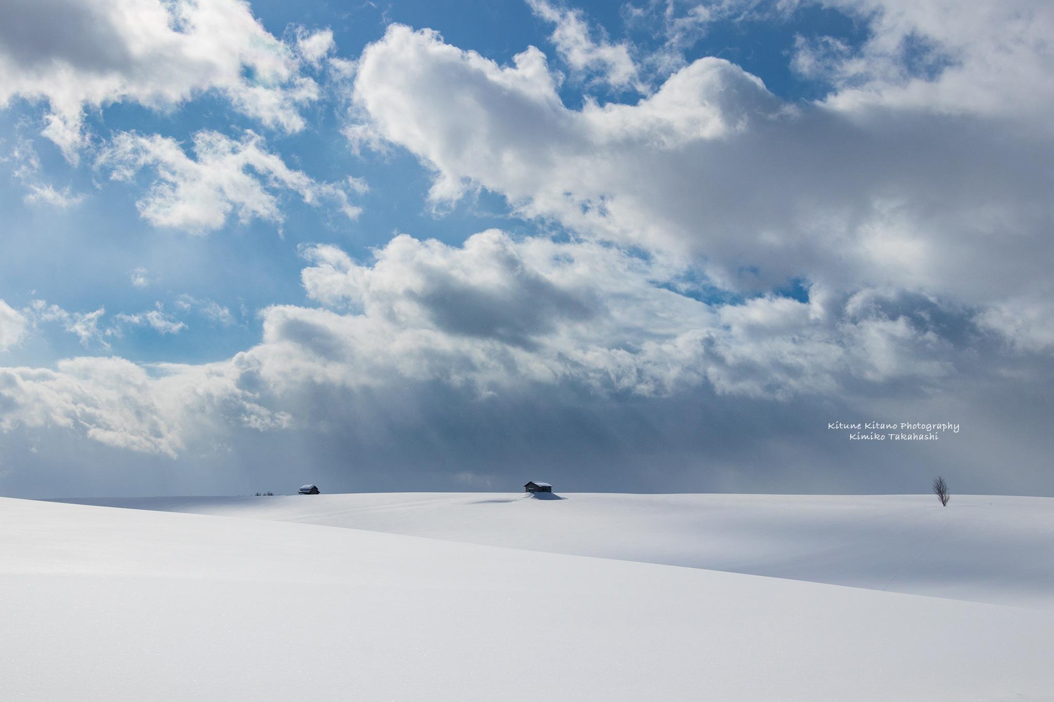 Sunny winter day by KIMIKO TAKAHASHI