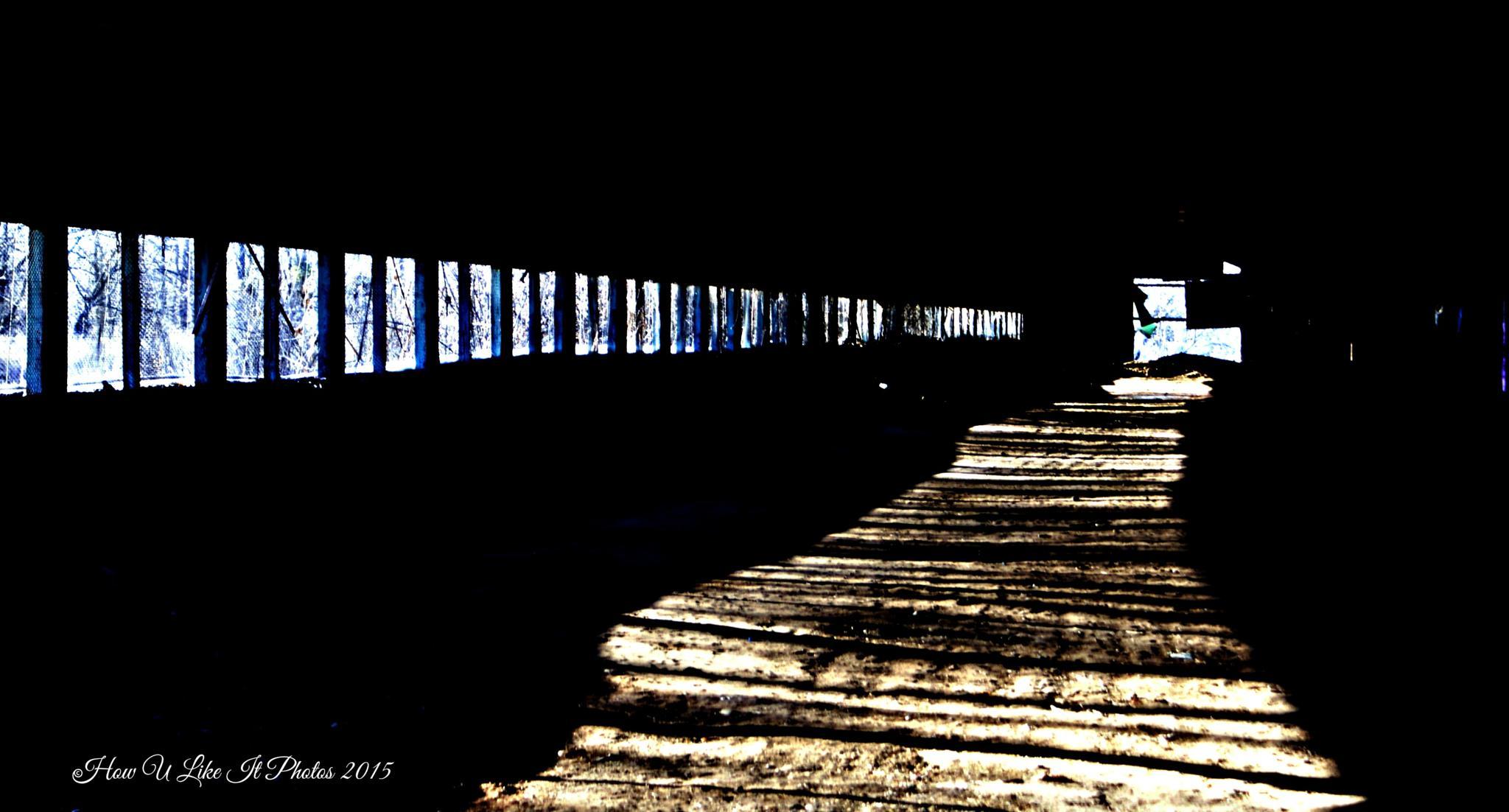 Dark shadows..... by Irene