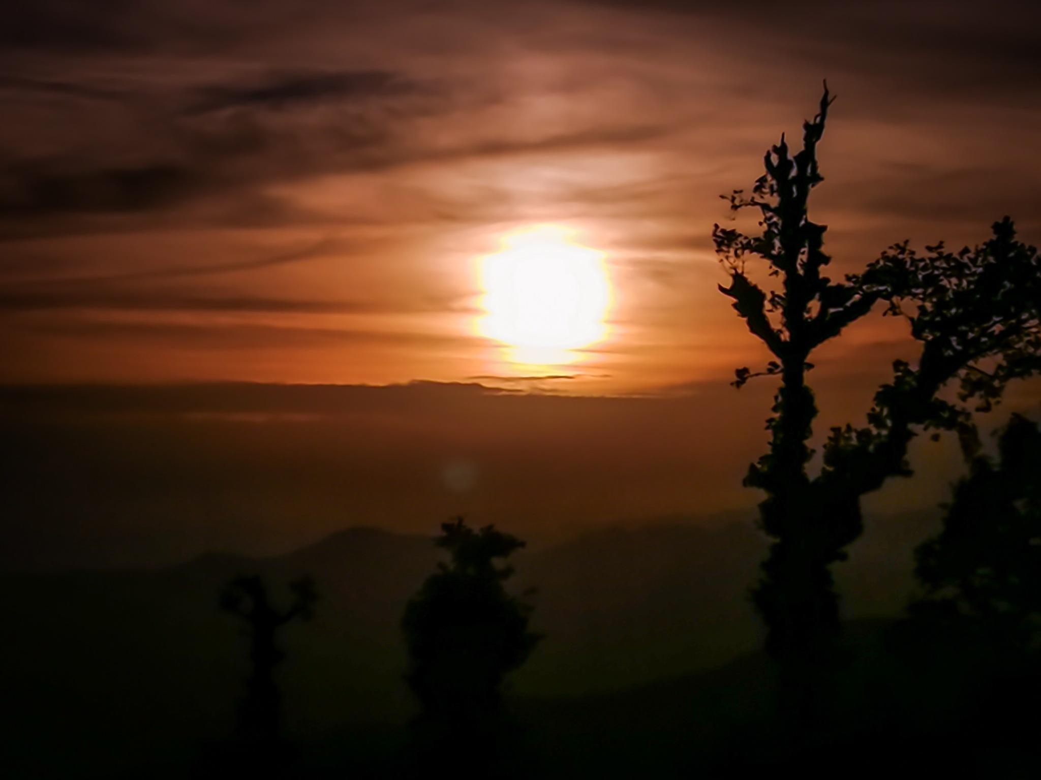 Sunset by Puneet Garg