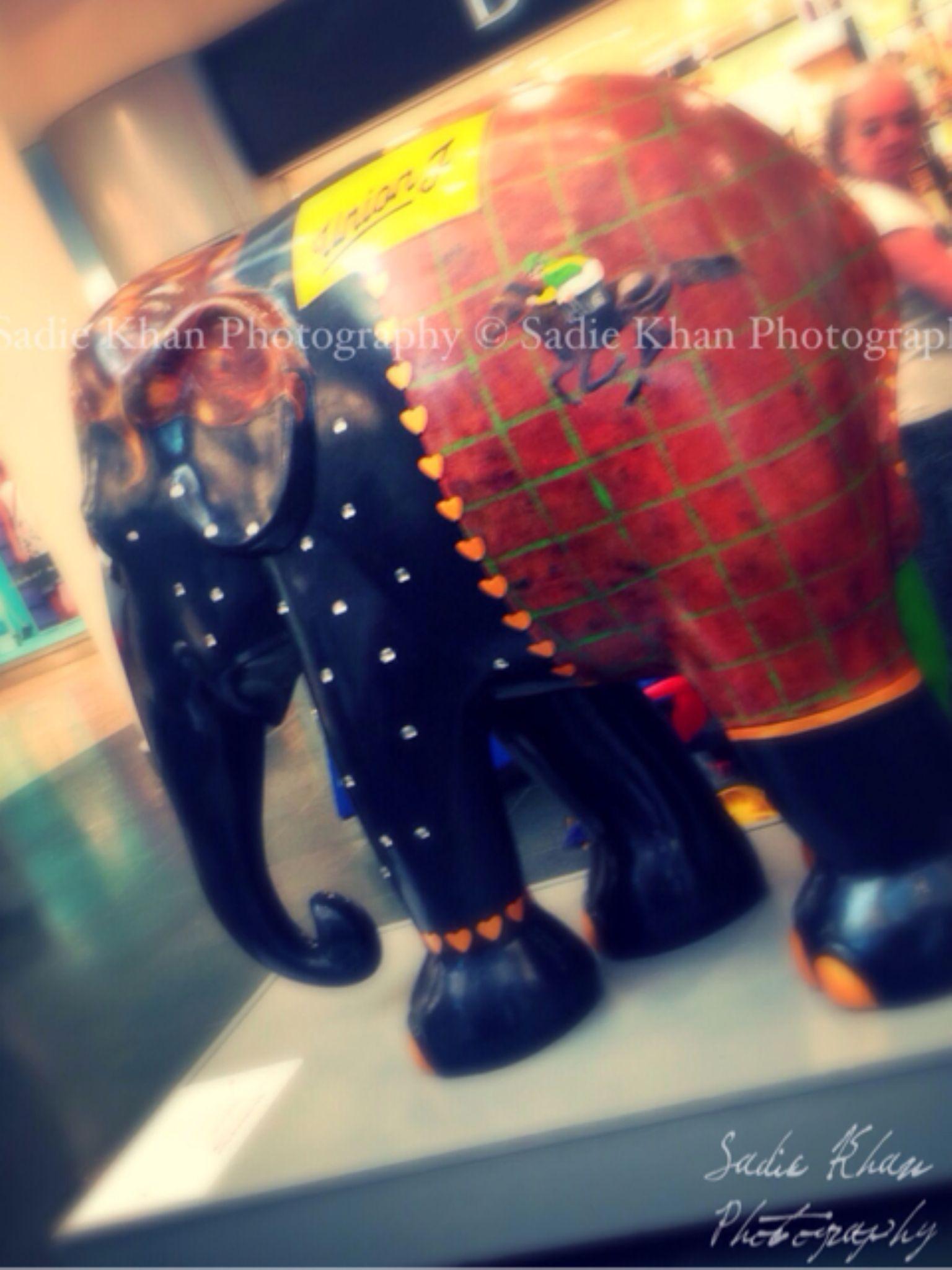 Elephant parade#intu uxbridge# amazing art work !! by sadiekhanphotography