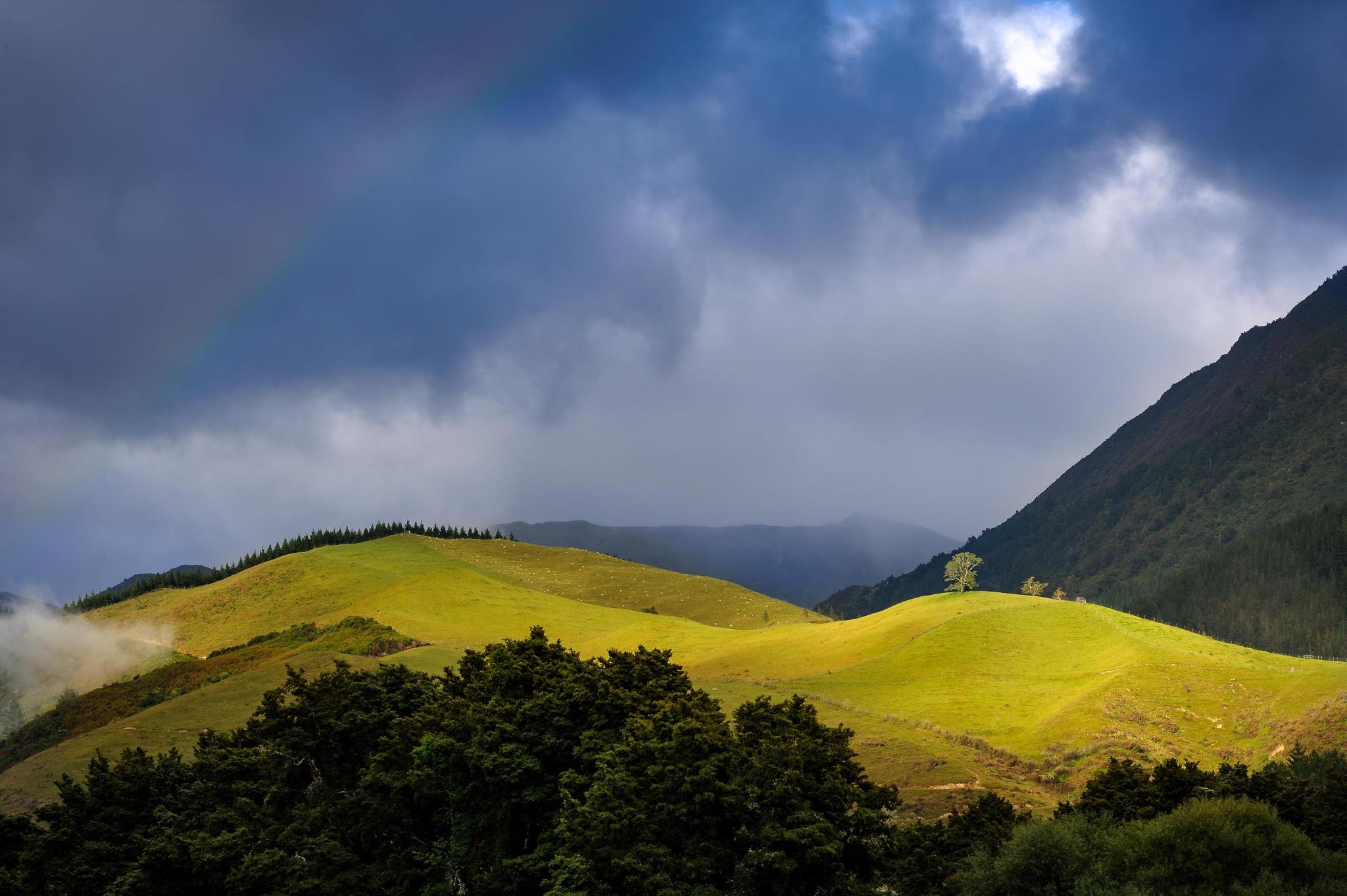 Green Pasture by Oliver Weber