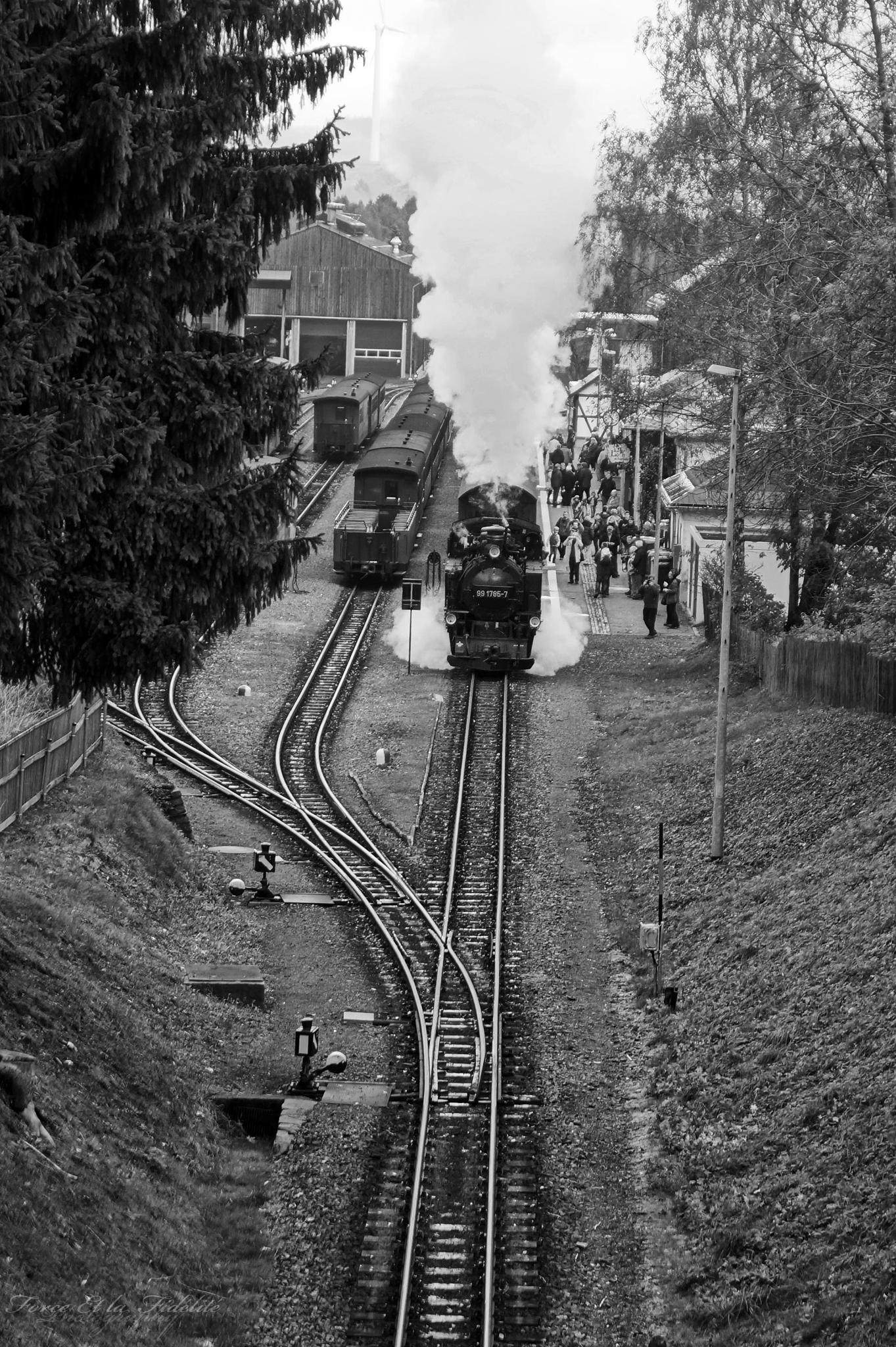 Fichtelbergbahn  by ForceEtLaFidelite