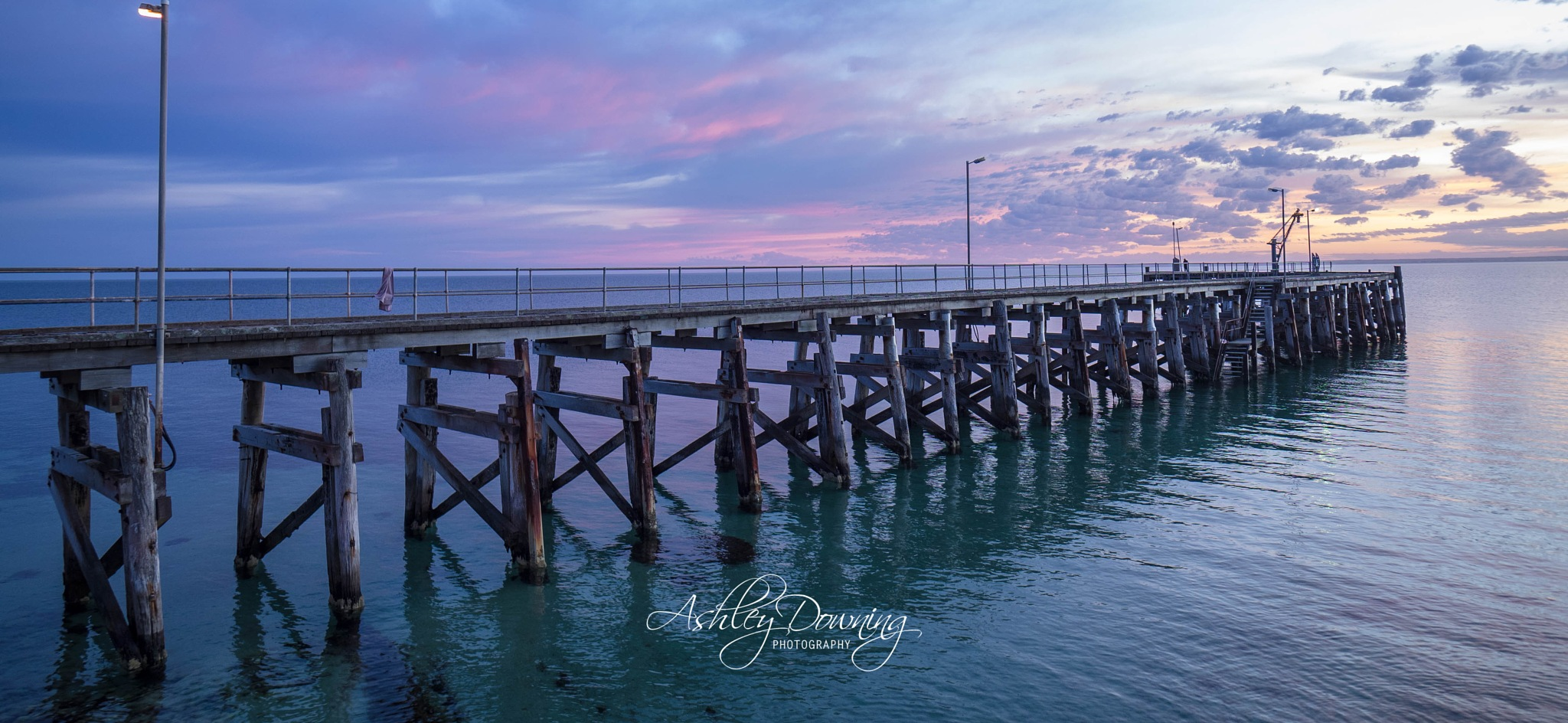 Silent Beauty by Ashley Downing