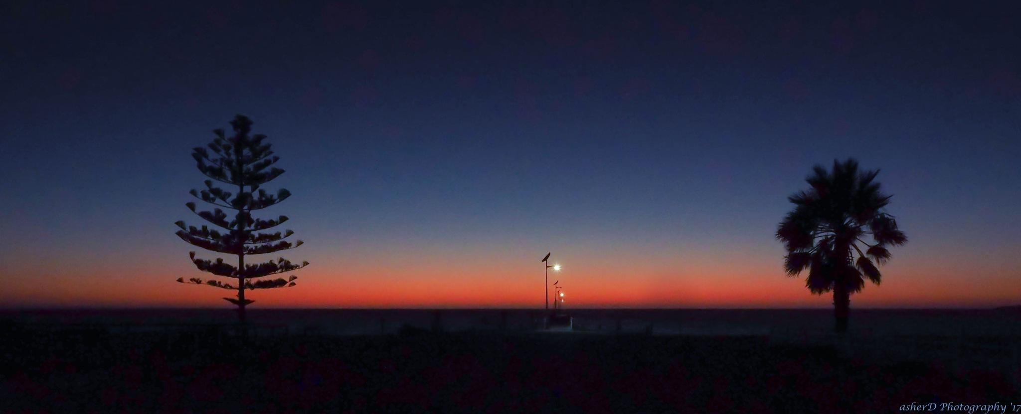 Toward daylight by Ashley Downing