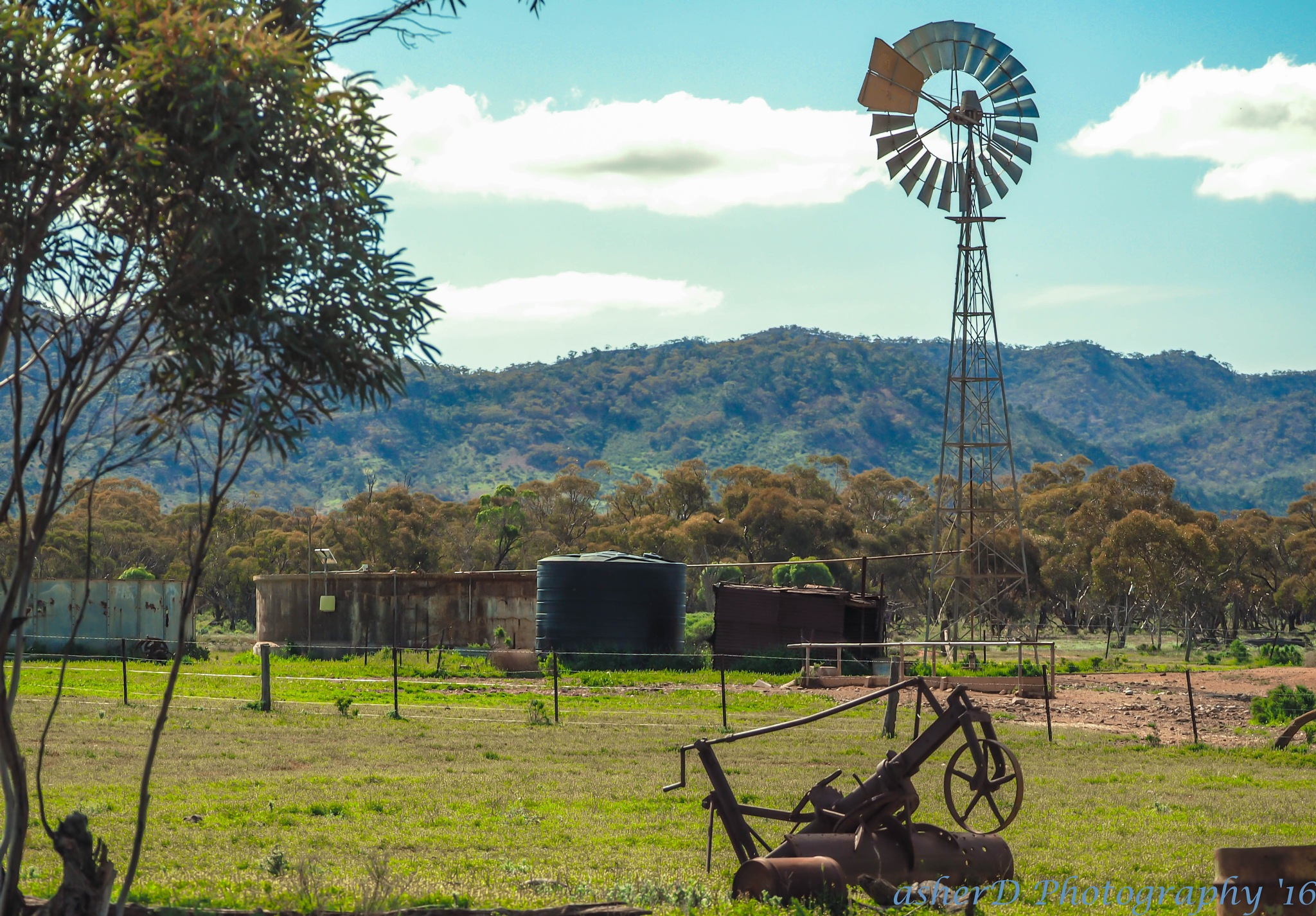 Flinders Ranges Cattle Yard by asherD